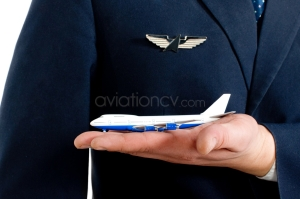 Pilot Demand - AviationCV.com
